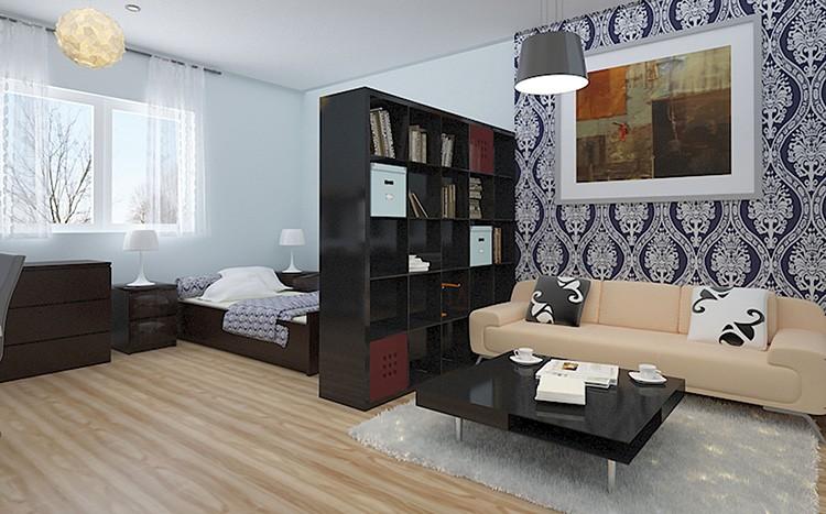 Хорошая идея, как совместить спальню и гостиную